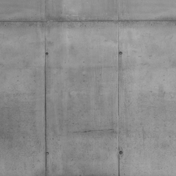 Concrete wall 25 | Wall art / Murals | CONCRETE WALL