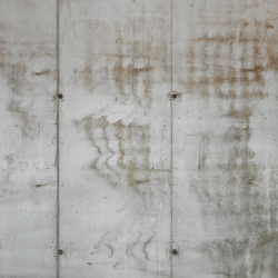 Concrete wall 28 | Wall art / Murals | CONCRETE WALL