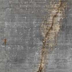 Concrete wall 32 | Wall art / Murals | CONCRETE WALL