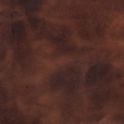 Pampas Tan | Natural leather wall tiles | Alphenberg Leather