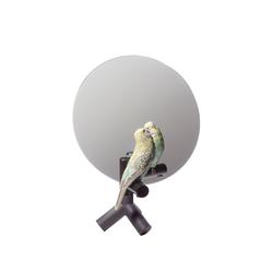 Parrot Vanity | Spiegel | Lladró