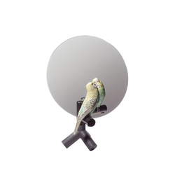 Parrot Vanity | Mirrors | Lladró