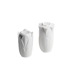 Naturofantastic - Salt & pepper shakers (white) | Sale & Pepe | Lladró