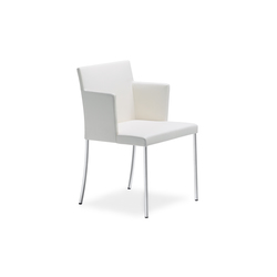 Jason Lite 1900 chair | Visitors chairs / Side chairs | Walter Knoll