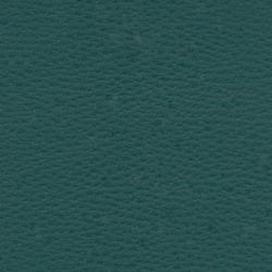 Beluga Forest | Außenbezugsstoffe | SPRADLING