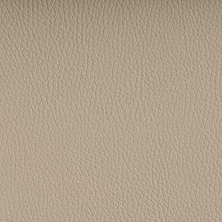BELUGA WHITECAP | Outdoor upholstery fabrics | SPRADLING
