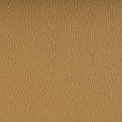 Beluga Dune | Tappezzeria per esterni | SPRADLING