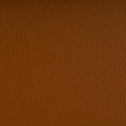 BELUGA OCHRE | Möbelbezugstoffe | SPRADLING
