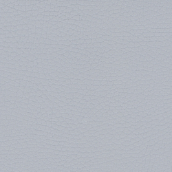 Beluga Pearl Grey | Outdoor upholstery fabrics | SPRADLING