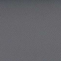 BELUGA PEARL GREY | Möbelbezugstoffe | SPRADLING