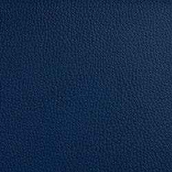 BELUGA CELESTIAL | Outdoor upholstery fabrics | SPRADLING