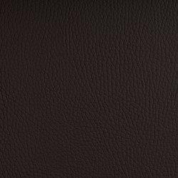 BELUGA MOCCA | Möbelbezugstoffe | SPRADLING