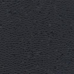 Beluga Blackbeard | Tapicería de exterior | SPRADLING