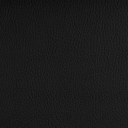 Beluga Blackbeard | Tappezzeria per esterni | SPRADLING