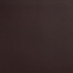 DOLCE Polyurethane Chocolate | Tessuti | SPRADLING