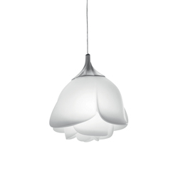 Baby Love | Pendant lights | MYYOUR