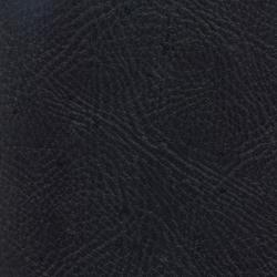 Pegasus Ebony | Outdoor upholstery fabrics | SPRADLING