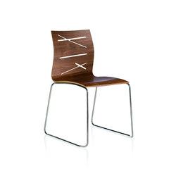 Todd Chair | Sillas | ALMA Design