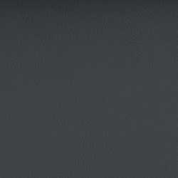 VALENCIA™ PLATIN | Upholstery fabrics | SPRADLING