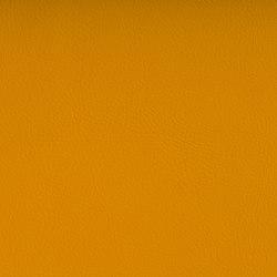 VALENCIA™ SAFRAN | Upholstery fabrics | SPRADLING