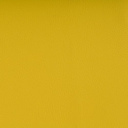 VALENCIA™ SONNE | Upholstery fabrics | SPRADLING