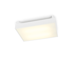 Izor 28 G-W/C | Ceiling lights | Trizo21