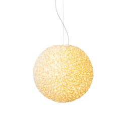 Evolutionary | Suspended lights | ANGO