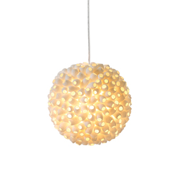 Evolutionette | Suspended lights | ANGO