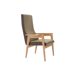 Danesa Armchair | Lounge chairs | Mobles 114