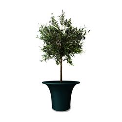 Cone big | Macetas plantas / Jardineras | Serralunga