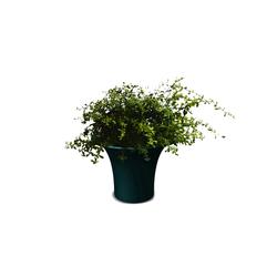 Cone small | Plant pots | Serralunga