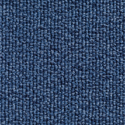 Concept 501 - 416 | Carpet rolls / Wall-to-wall carpets | Carpet Concept