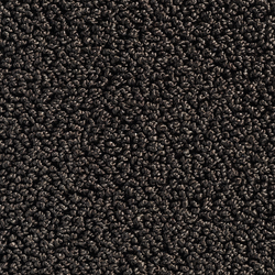 Concept 502 - 153 | Wall-to-wall carpets | Carpet Concept
