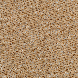 Concept 503 - 119 | Wall-to-wall carpets | Carpet Concept