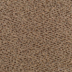Concept 503 - 136 | Wall-to-wall carpets | Carpet Concept