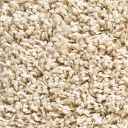 Concept 504 - 115 | Carpet rolls / Wall-to-wall carpets | Carpet Concept