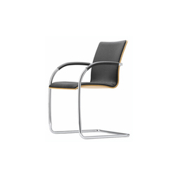 S 81 P | Visitors chairs / Side chairs | Gebrüder T 1819