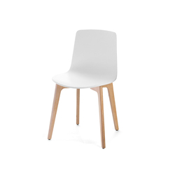 Lottus Chair | Chaises de restaurant | ENEA