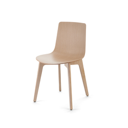 Lottus Chair | Sillas para restaurantes | ENEA