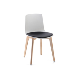 Lottus Chair | Restaurant chairs | ENEA