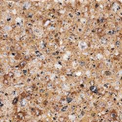 Silestone Amarillio Palmira | Mineral composite panels | Cosentino