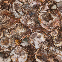 Prexury Petrified Wood | Mineral composite panels | Cosentino