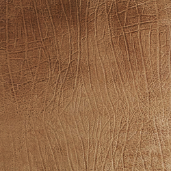 Tactile Ivory elefant | Natural leather wall tiles | Nextep Leathers