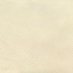 Natural Lorea Bravo 101 | Fabrics | Alonso Mercader