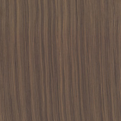 ALPIlignum Indian Rosewood 10.23 | Chapas | Alpi