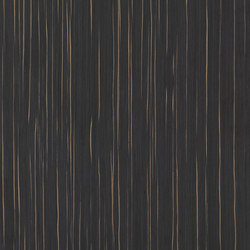ALPIlignum Ammara Ebony 10.42 | Placages | Alpi