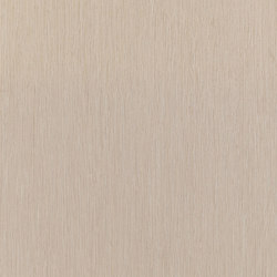 ALPIlignum Oak 10.61 | Wand Furniere | Alpi