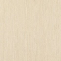 ALPIlignum Steady Oak 10.63 | Wand Furniere | Alpi