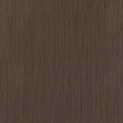 ALPIlignum Dark Oak 10.67 | Wand Furniere | Alpi