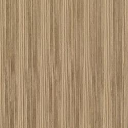 ALPIlignum Zebrawood 10.71 | Wand Furniere | Alpi